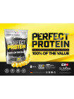 Dr.Hoffman Perfect Protein 1000 г