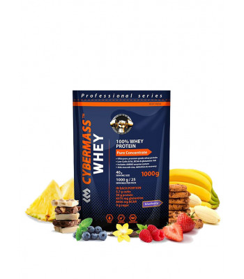 Cybermass Whey Protein 1000 г